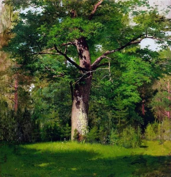 Исаак Левитан Дуб. 1880.jpg